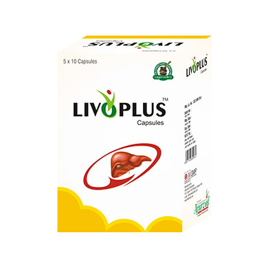 Liver Support Supplements